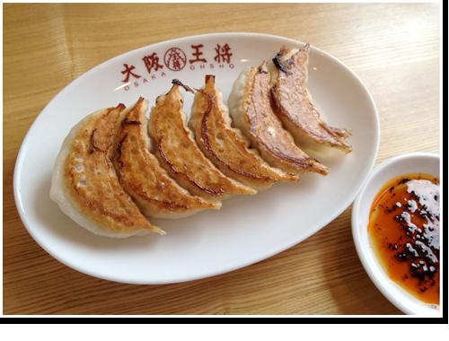 「新!元祖焼餃子」(単品)を斜め上から撮影